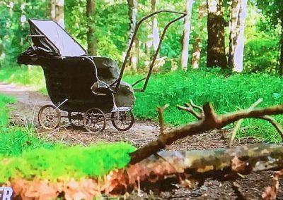 Kinderwagen Chateau Meiland 3